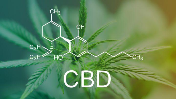 CBD et ses effets thérapeutiques