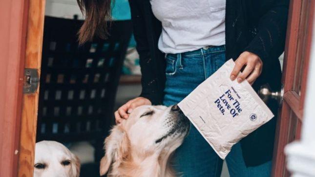 Huile de CBD pour animaux de compagnie: un remède à la maison?