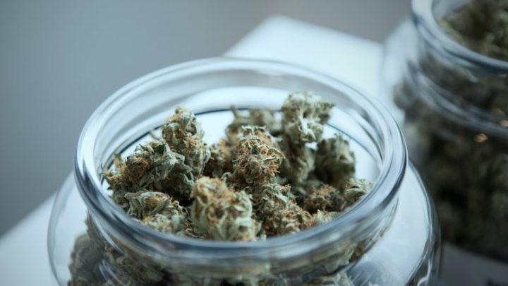 Un guide pour votre premier voyage dans un dispensaire de cannabis