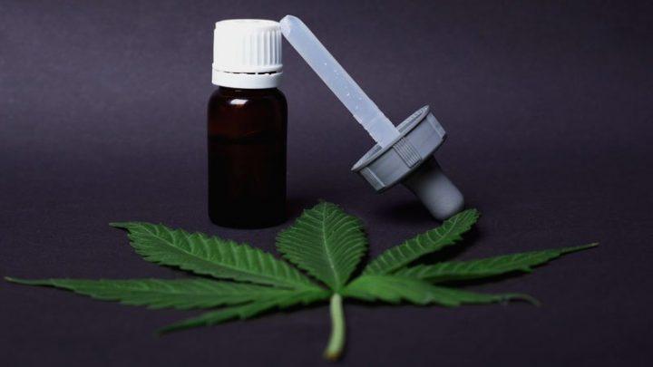 FDA, chercheurs toujours dans les mauvaises herbes sur le cannabis, le CBD et le genre