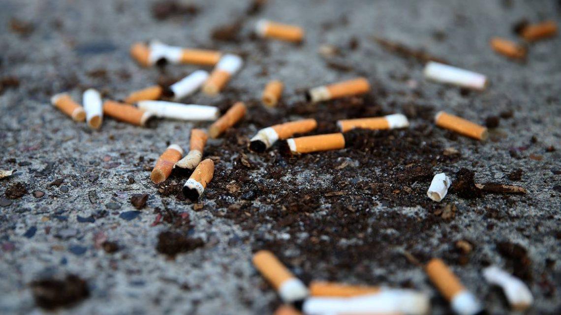 La campagne Banishing Bathurst Butts cible les déchets de cigarettes dans le CBD    Avocat occidental