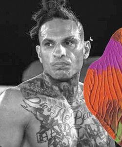 Ulysses «The Monster» Diaz nommé ambassadeur de la marque Bespoke CBD