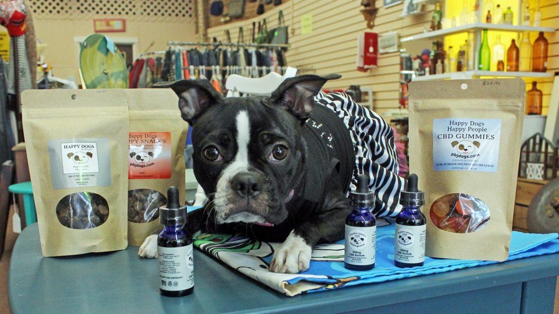 Happy Dogs CBD Gâteries lancées par une entreprise du comté de Fremont