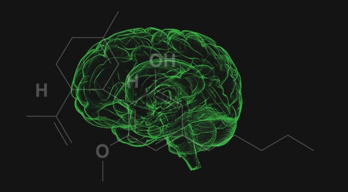 Le CBD est-il psychoactif?  |  Benzinga