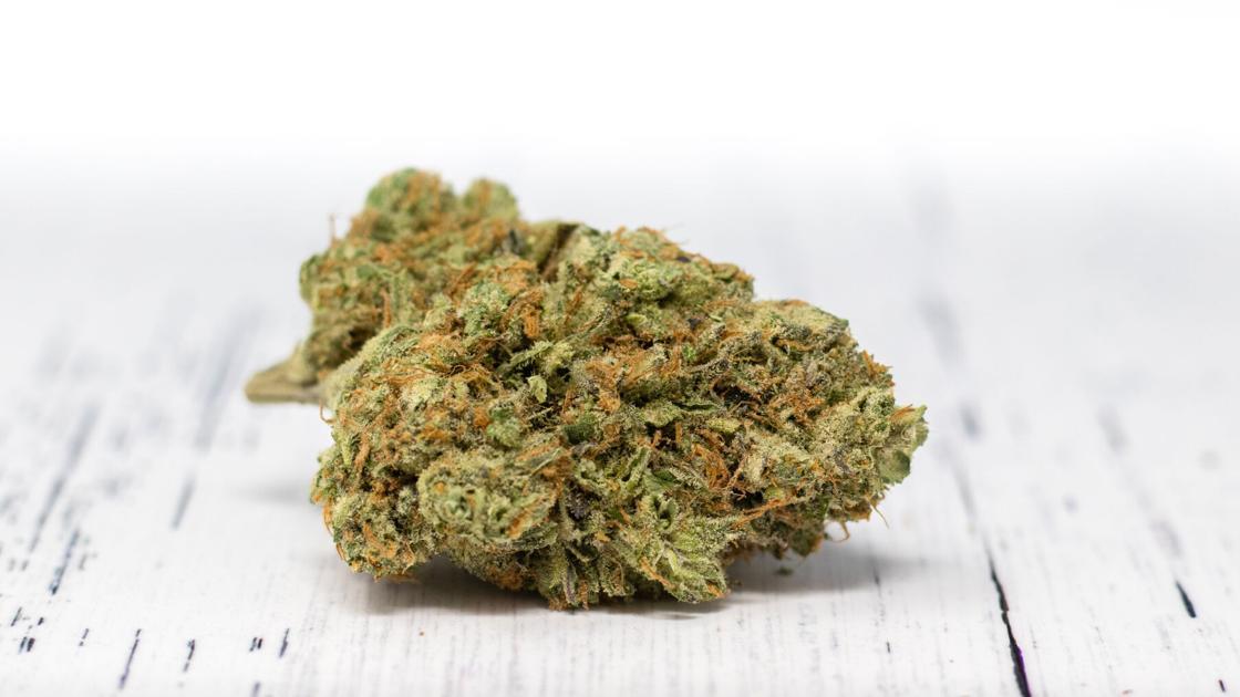 Le consultant en cannabis: THC?  CBD?  Comment savons-nous quoi quoi?  |  Santé et bien-être