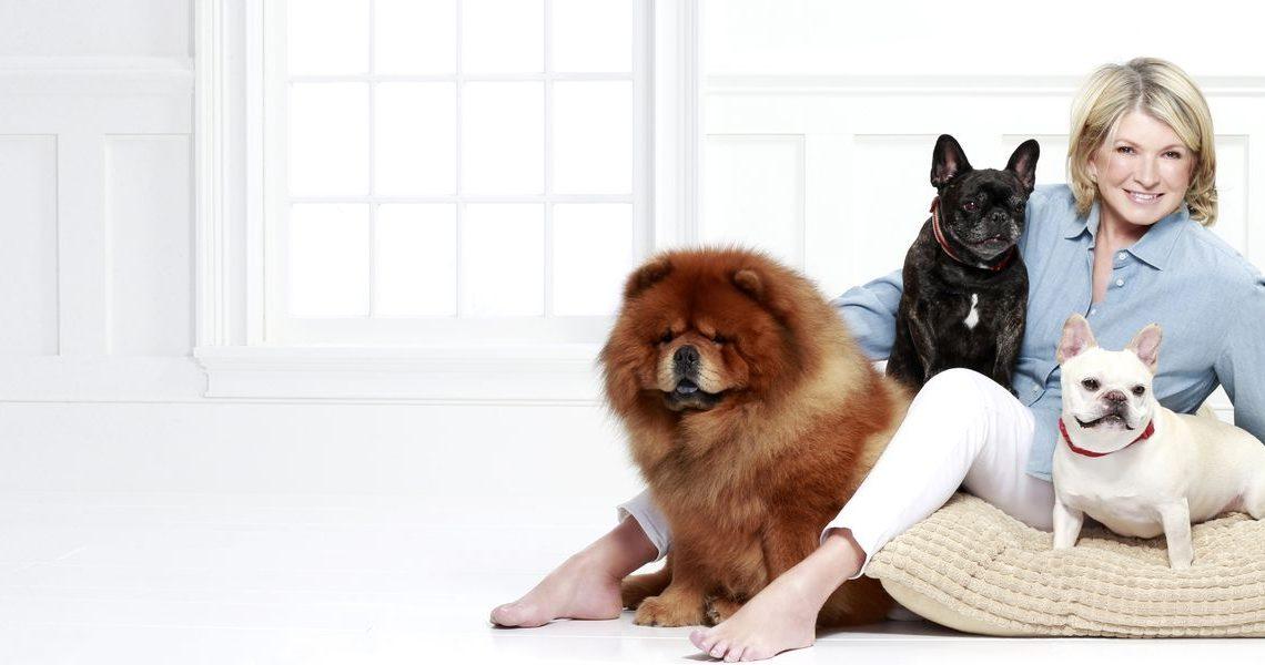 Martha Stewart ajoute des friandises pour chiens à sa gamme CBD