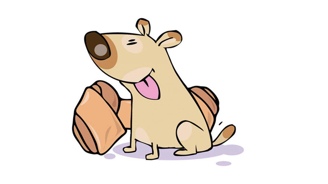 Meilleures friandises pour chiens CBD – Avis sur 2021