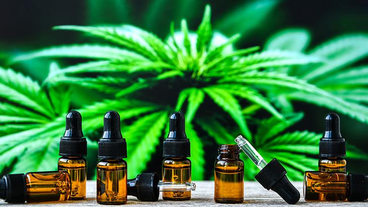 Étude: l'administration de CBD n'atténue pas les envies de cocaïne chez les sujets dépendants