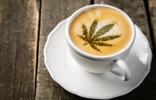 L'IPO rejette la marque déposée « Cheerful Buddha » pour le café CBD