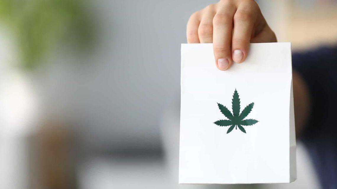 Le CBD sera vendu en pharmacie, les actions ASX de cannabis réagissent
