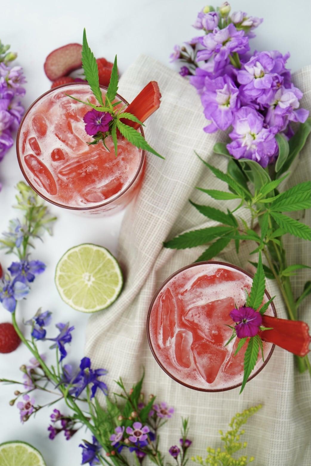 Spritz CBD à la framboise et à la rhubarbe