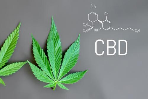 Californie Fed.  Le tribunal maintient le procès contre le CBD en attendant l'action de la FDA