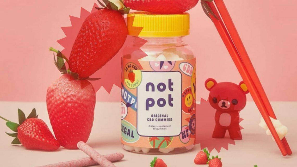 Not Pot CBD Gummy pour l'examen du sommeil