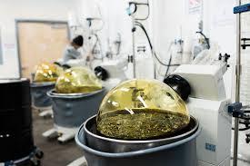 Rapport sur le marché de l'extrait d'huile de CBD 2021-2027 |  Croissance de l'industrie, part, taille, demande, tendances et portée future |  ilray GW Pharmaceuticals plc, Tikun Olam, The Cronos Group – KSU