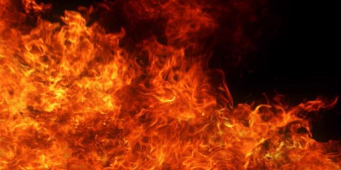 Un incendie au terminus de la CDB détruit des bus et une propriété de plusieurs millions de dollars