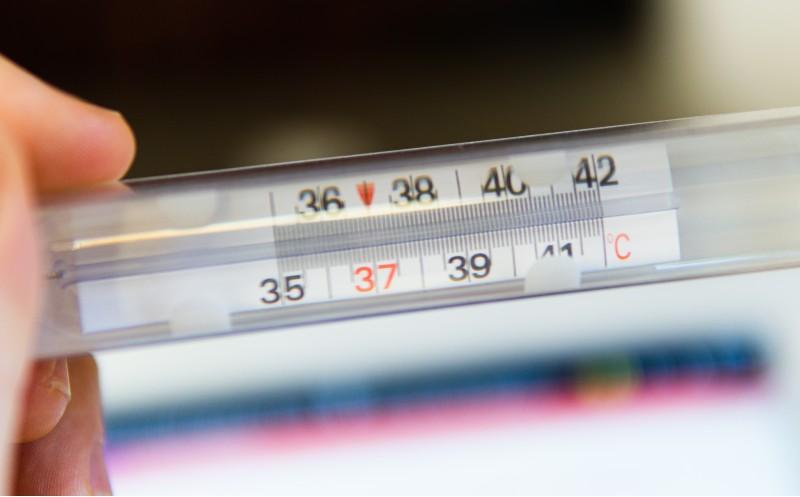 Pourquoi le contrôle de la température est-il important pour l'industrie du cannabis?