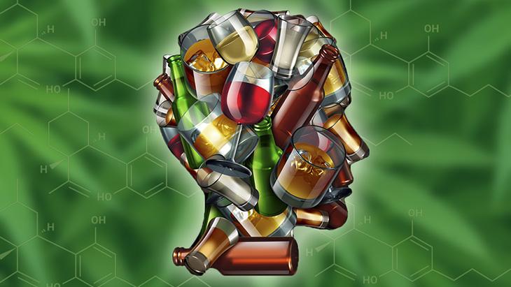 Étude: Utilisation de cannabis à dominance CBD associée à une consommation d'alcool réduite