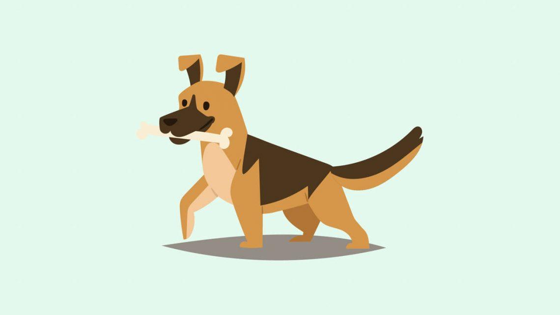 Meilleures friandises pour chiens au CBD pour réduire l'anxiété et la douleur du chien