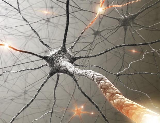 Une étude met en lumière la capacité du CBD à réduire la douleur