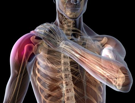 Comment le CBD agit comme relaxant musculaire naturel