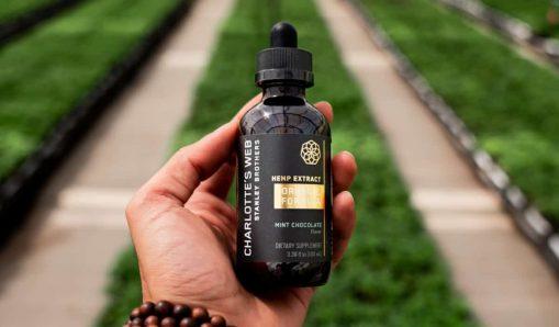 Charlotte's Web obtient l'approbation de Santé Canada pour commercialiser ses cultivars exclusifs de CBD au Canada – New Cannabis Ventures