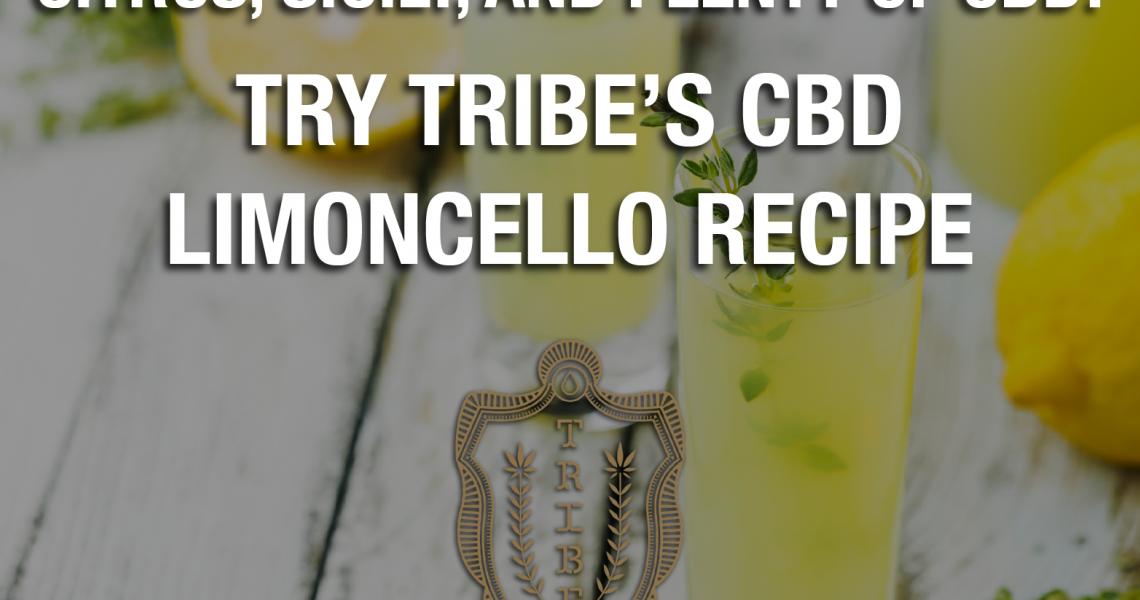 Agrumes, Sicile et beaucoup de CBD !  – Essayez la recette de CBD Limoncello de Tribe