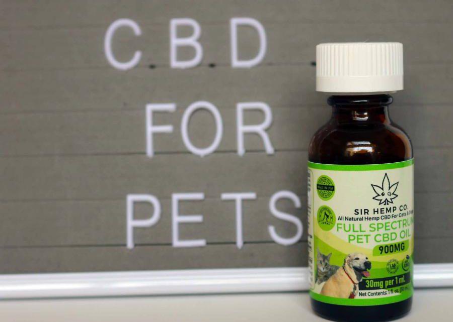 La marque de produits pour animaux de compagnie CBD SIR HEMP CO s'étend aux marchés félin et canin : offre du CBD pour les chats et du CBD pour les chiens