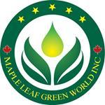 Maple Leaf Green World Inc. obtient une lettre d'intention pour acheter du CBD