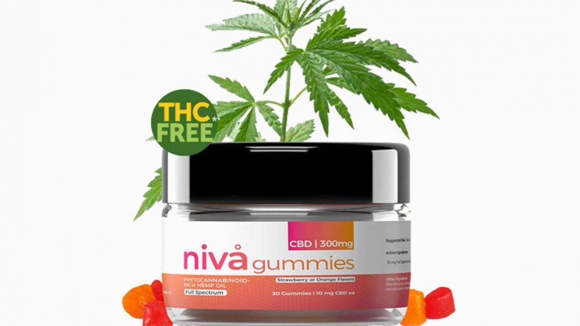 Niva CBD Gummies Review – Riches comestibles à l'huile de chanvre CBD ou arnaque ?