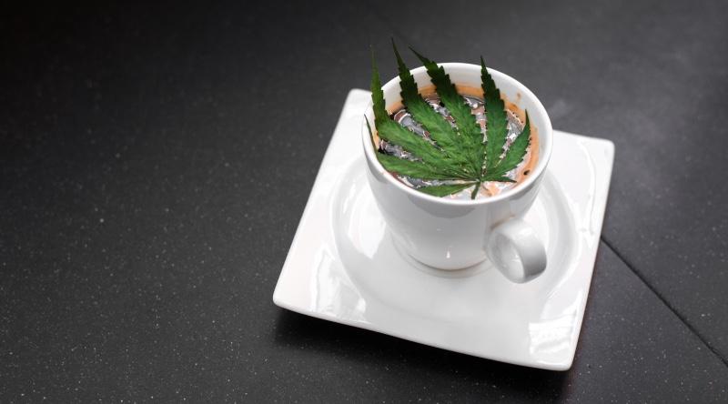 Des données étonnamment intelligentes pour le tourisme du cannabis
