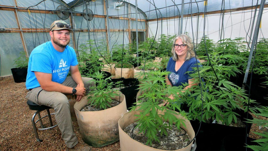 La ferme de chanvre du Kansas passe de la ferme au magasin CBD High Point Pharms