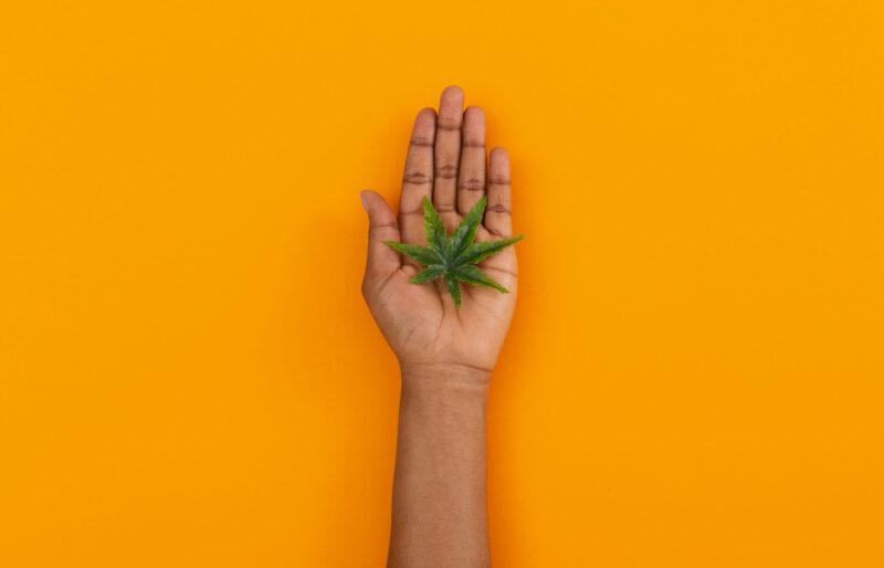 Le rôle important de l'équité sociale dans l'embauche de cannabis