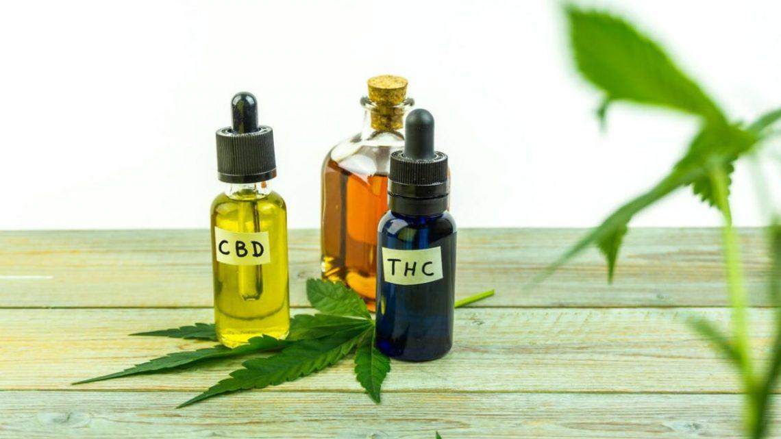 Quel est le meilleur : THC ou CBD ?
