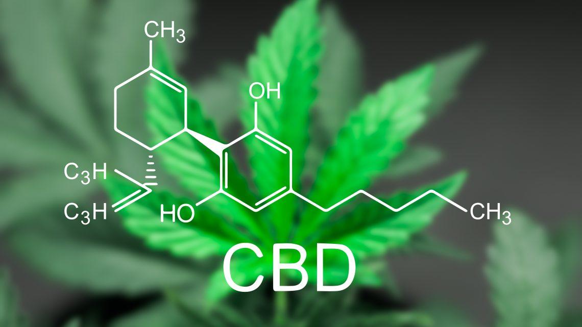 Un projet de loi vise à dépénaliser le cannabis et à définir un niveau de consommation de CBD sûr