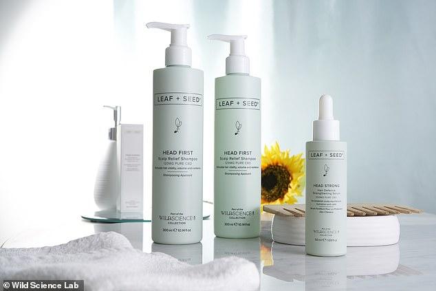 Obtenez des soins capillaires à base de CBD pour favoriser une croissance saine des cheveux et apaiser les démangeaisons du cuir chevelu