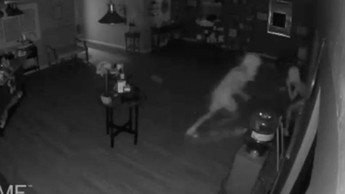 Des voleurs contrecarrés après avoir fait irruption dans le magasin CBD de Marco Island