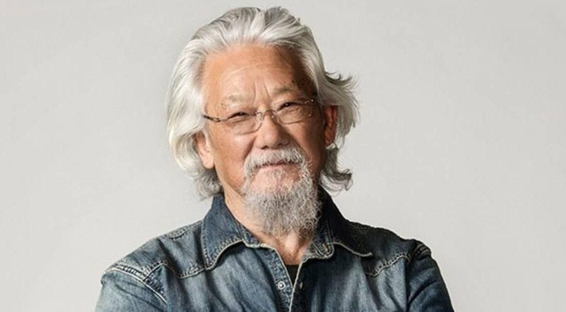 La Fondation David Suzuki dénonce l'arnaque des bonbons au CBD en utilisant les noms de Suzuki et Kevin O'Leary