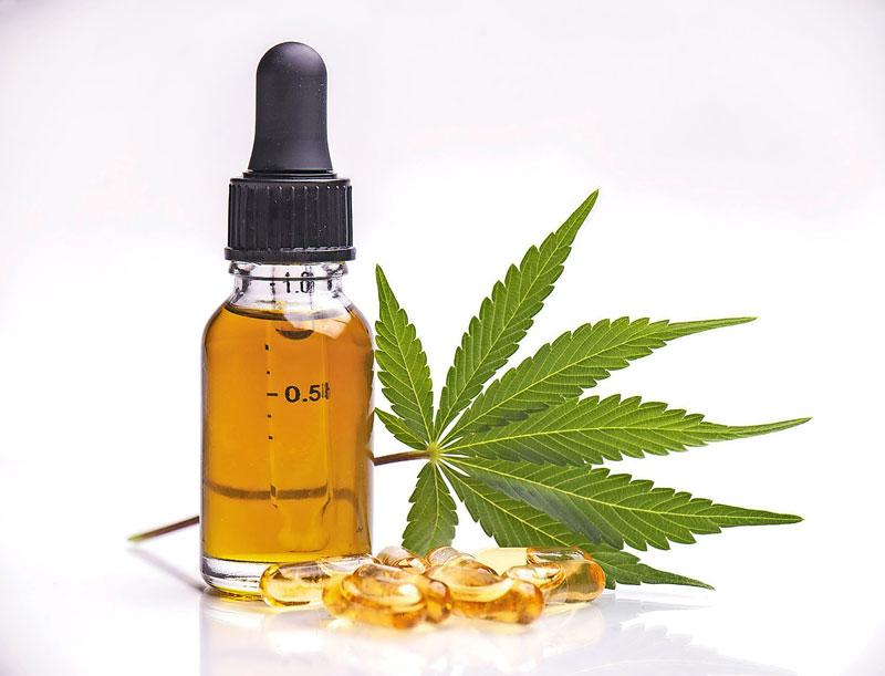 Briser le mythe sur le CBD et la plante de cannabis